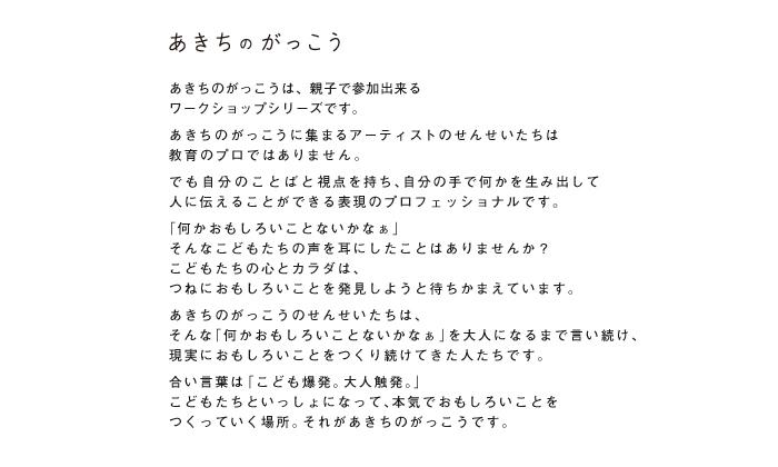 akichi_concept
